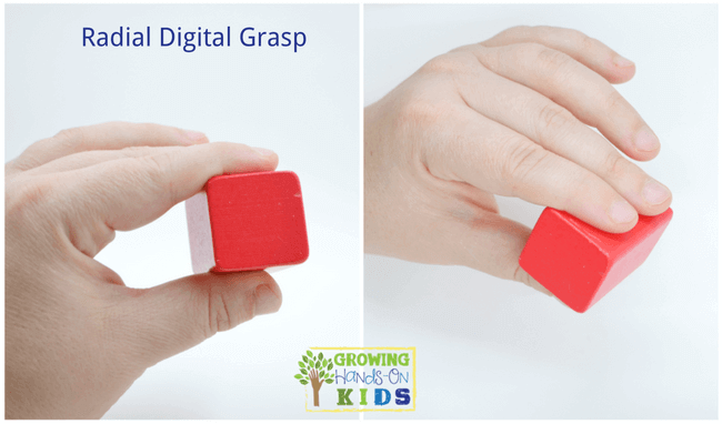 Radial digital grasp, typical pencil grasp development in children.