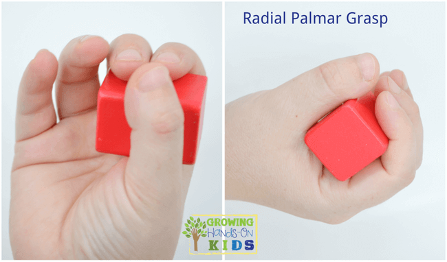 Radial Palmar Grasp, typical pencil grasp development in children.