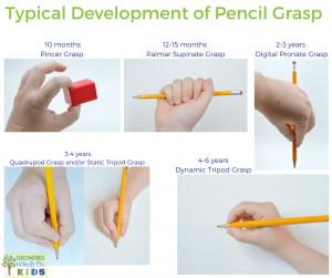 Typical Pencil Grasp Development for Handwriting in Children.