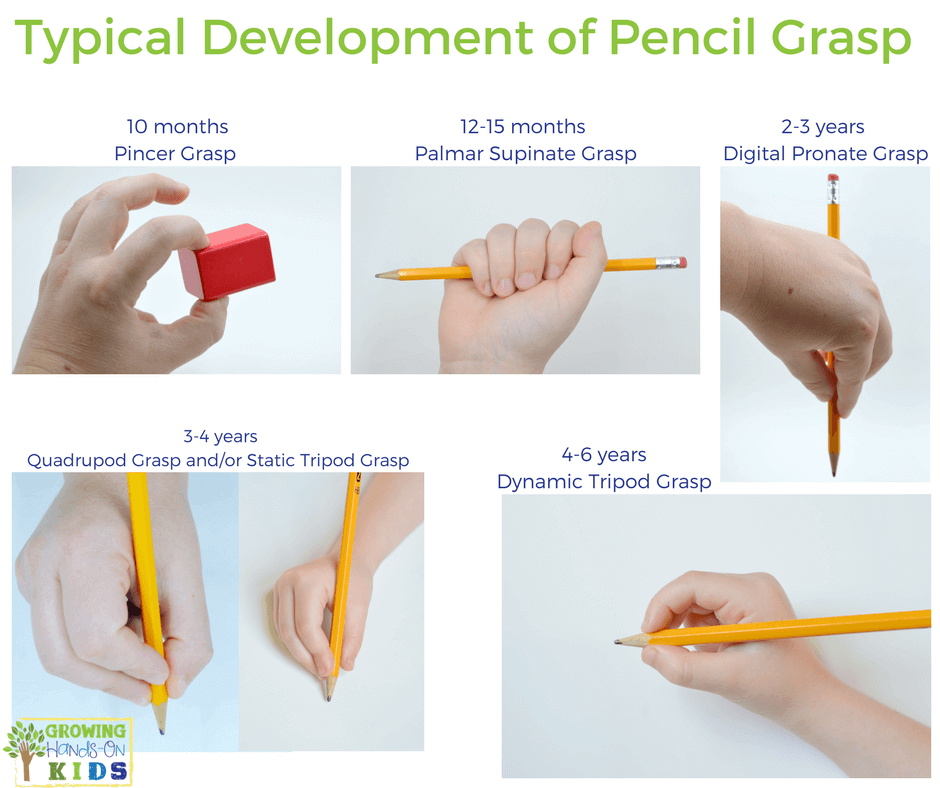 Typical Pencil Grasp Development for Handwriting in Children.