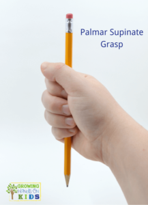Palmar supinate grasp, typical pencil grasp development in children.