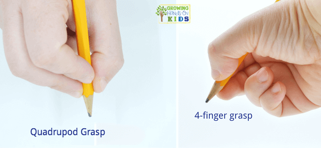 Quadrupod grasp for typical pencil grasp development.