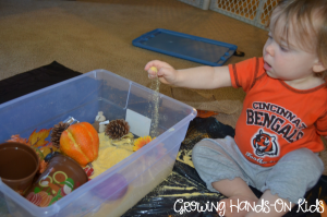 playing with fall cornmeal sensory box for toddlers and preschoolers.