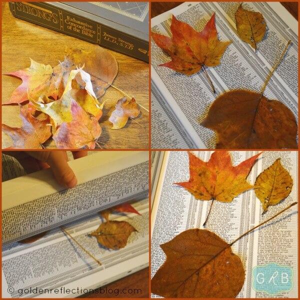 Leaf Rubbing Collage 1