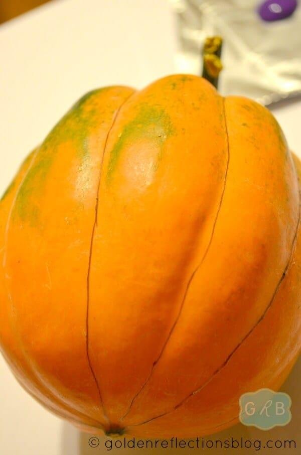 Pumpkin Painting 2