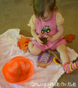 Investigating Fall sensory basket for baby