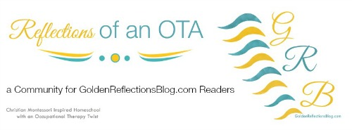 Reflections of an OTA FB Group Cover 500x185.jpg