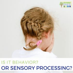 Is it behavior? Or Sensory Processing?