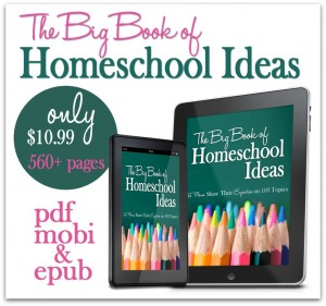 The Big Book of Homeschool Ideas from the iHomeschool Network