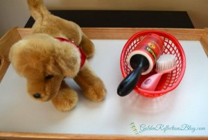 dog brushing tray for dog themed montessori inspired tot school week. www.GoldenReflectionsBlog.com