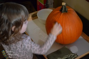 Pumpkin washing station for pumpkin theme tot school week. www.GoldenReflectionsBlog.com