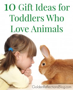 Have a child who lives animals? Check out these fun gift ideas for toddlers who love animals. www.GoldenReflectionsBlog.com