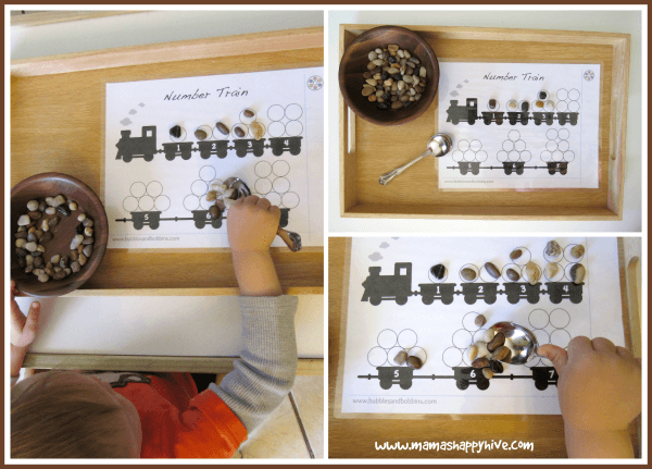 train rock transfer tot tray