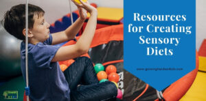 "Young boy sitting on a saucer swing throwing coloring balls at a target. Blue overlay with white text that says ""Resources for Creating Sensory Diets""."
