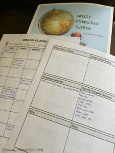 homeschool planner ideas for tot-school activities.