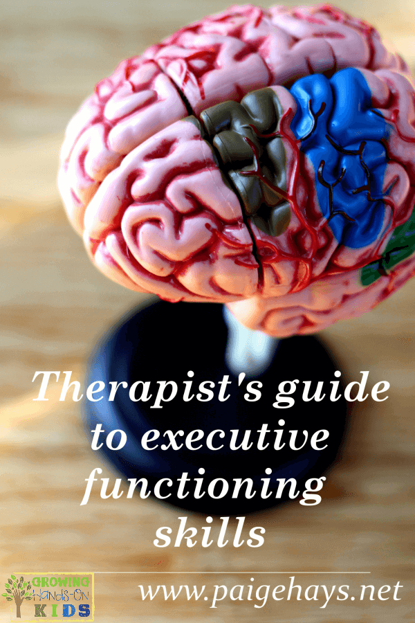 A therapist's guide to executive functioning, for occupational therapists, physical therapists and speech therapists.