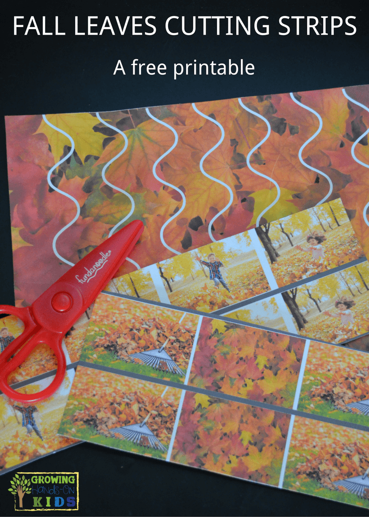 Fall leaves cutting strips for scissor practice with preschoolers.