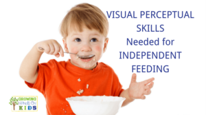 Visual Perceptual Skills Needed for Independent Feeding