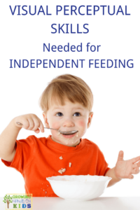 Visual perceptual skills needed for independent feeding skills with kids.