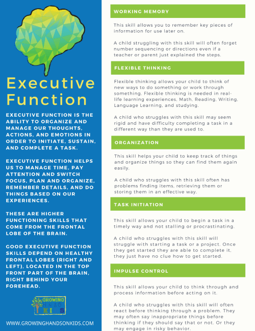 Free printable on executive functioning skills.