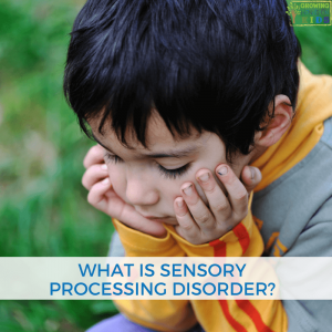 What is sensory processing disorder?