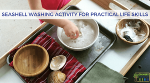 Seashell Washing Activity for Practical Life Skills