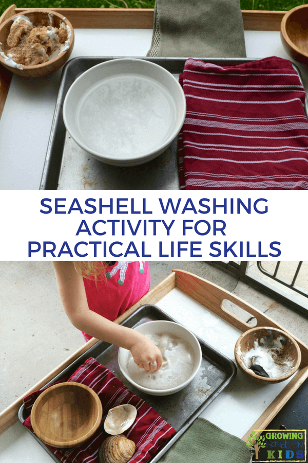 Seashell Washing Activity for Practical Life Skills. Montessori inspired activities at home. #PracticalLife #WashingActivity #Kidsactivity #montessoriInspired #ToddlerActivity #Activitiesofdailyliving